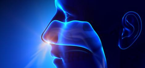 Erişkinlerde Akut ve Kronik Sinüsit Teşhis ve Tedavisi