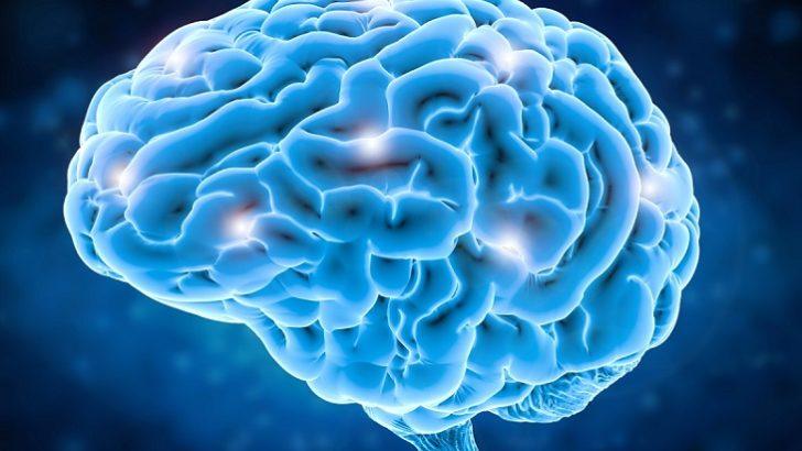 Beyin Ameliyatlarında Haritalama Dönemi