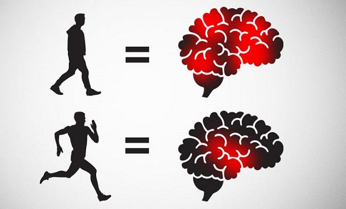 Egzersiz Öğrenme Yetisini Geliştiriyor