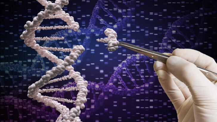 Gen Düzenleme Yöntemiyle Kanser Tedavisi